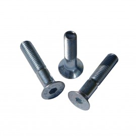 1 Countersunk  Screw M10 (30-100mm Length)