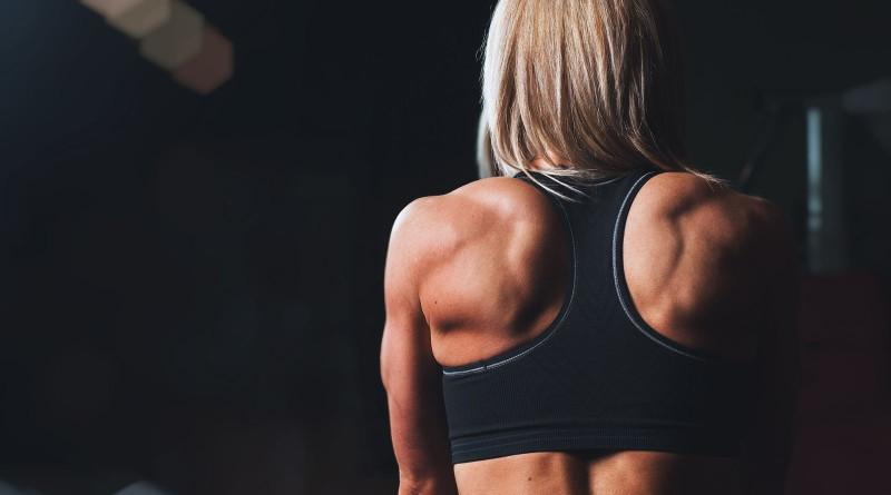 Der Trapezius - Wichtiger Muskel zur Vermeidung des Kletterrundrückens