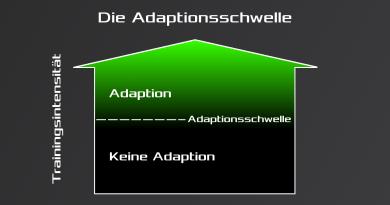 Das Trainingsprinzip der Adaptionsschwelle