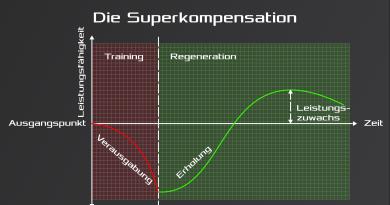Das Trainingsprinzip der Superkompensation