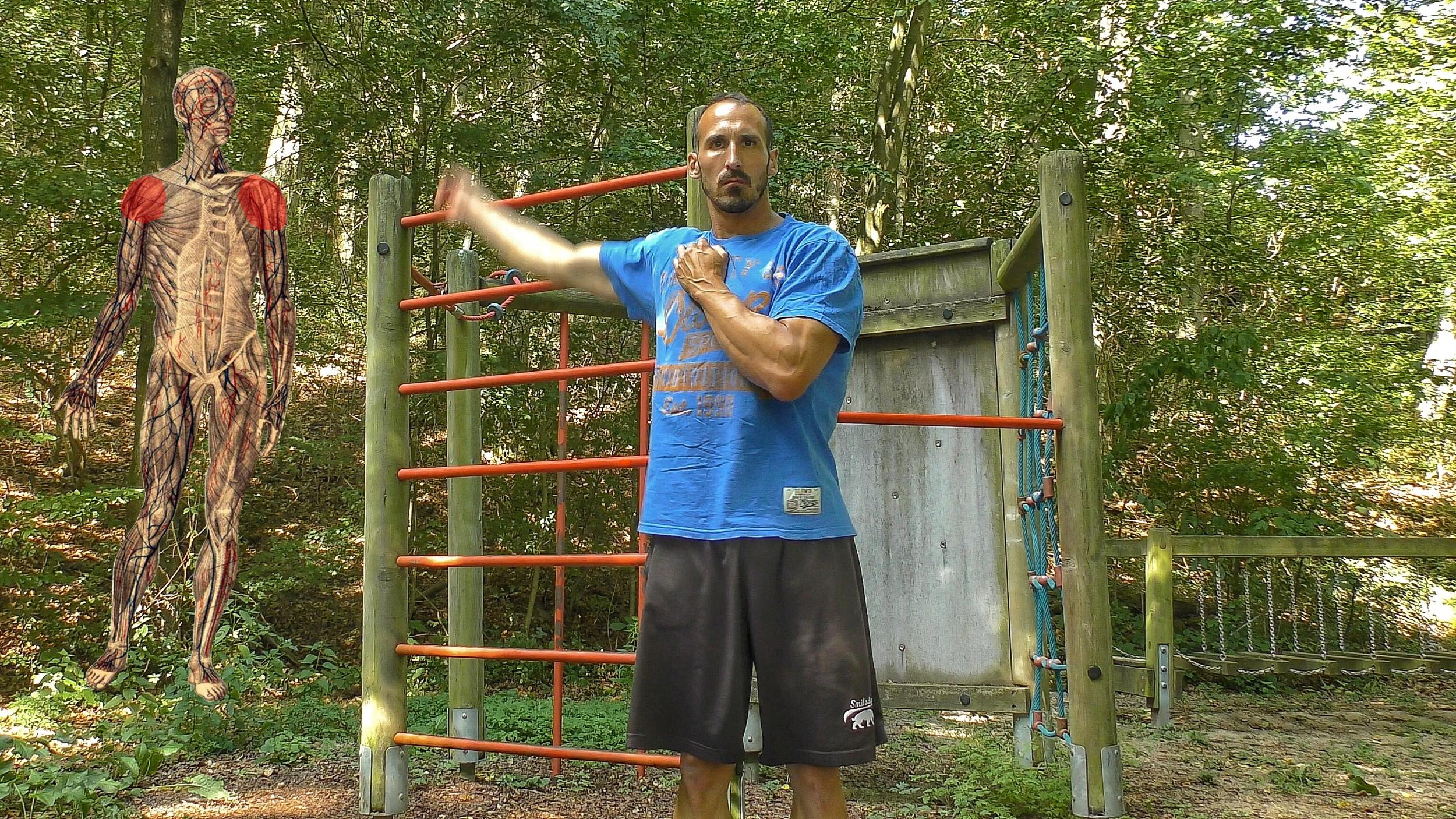 Verletzungsprophylaxe durch Beweglichkeit - Übung 10 - Armkreisen vorwärts, rückwärts, gegengleich - Schulter
