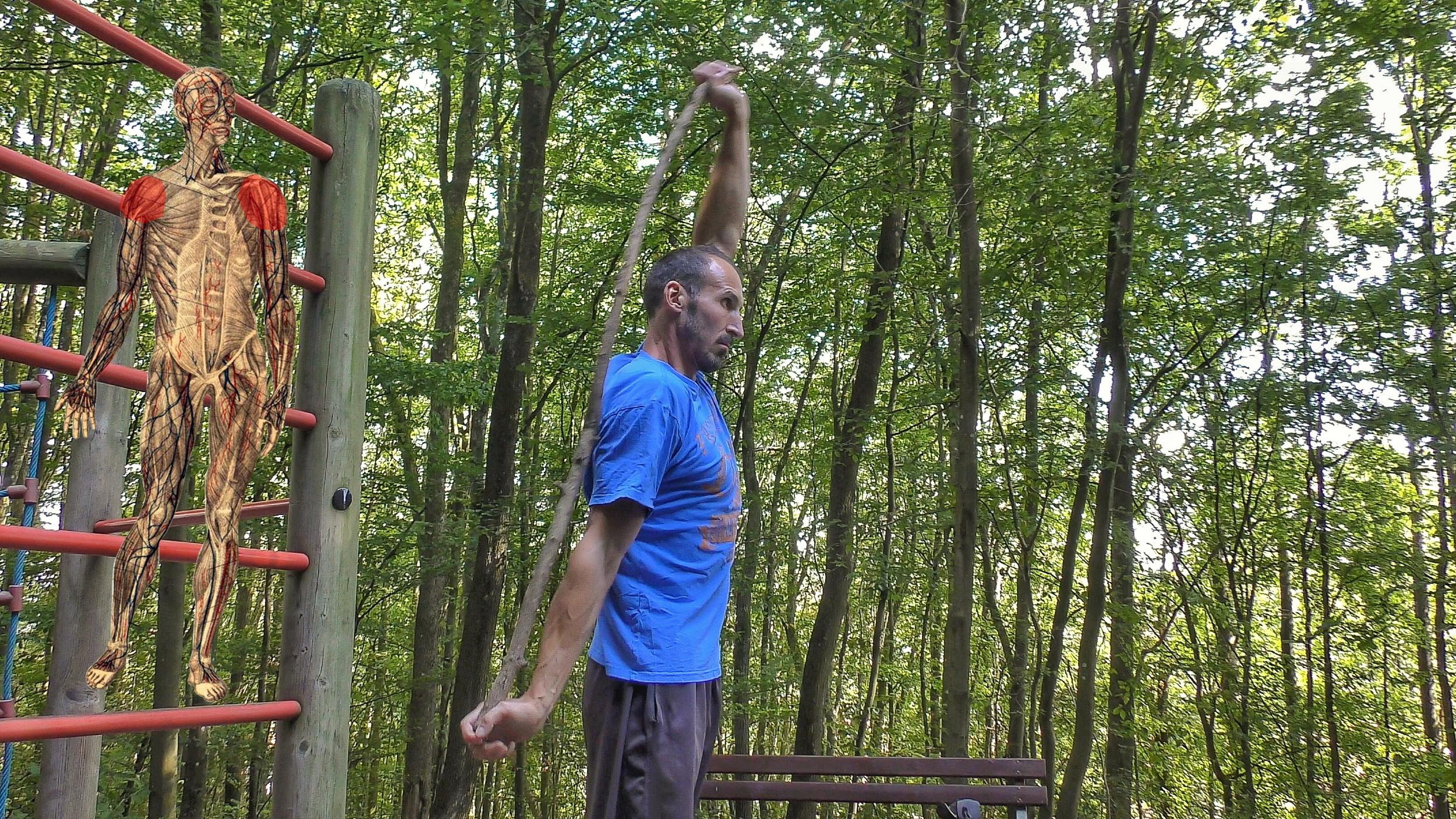 Verletzungsprophylaxe durch Beweglichkeit - Übung 11 - Stock- oder Therabandkreisen - vorwärts, rückwärts, diagonal - Schulter